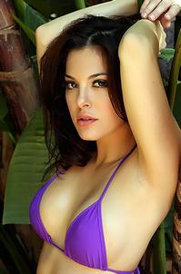 Olivia Purple