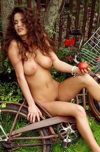 Playboy Jennifer Lavoie