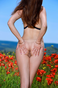 Lingerie and Poppies 19